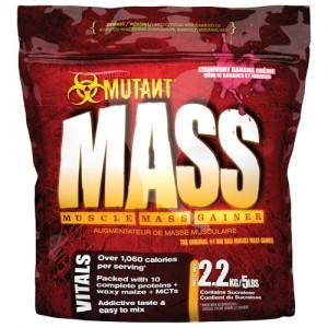 Mutant Mass - 2.27kg